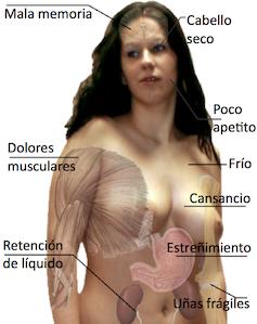 Los ejercicios para el adelgazamiento del talle de las caderas y las nalgas en